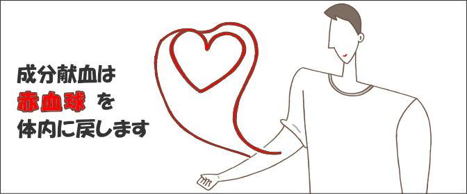 身体への負担が少ない献血の種類は?