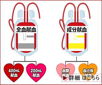 献血の種類確認はこちら